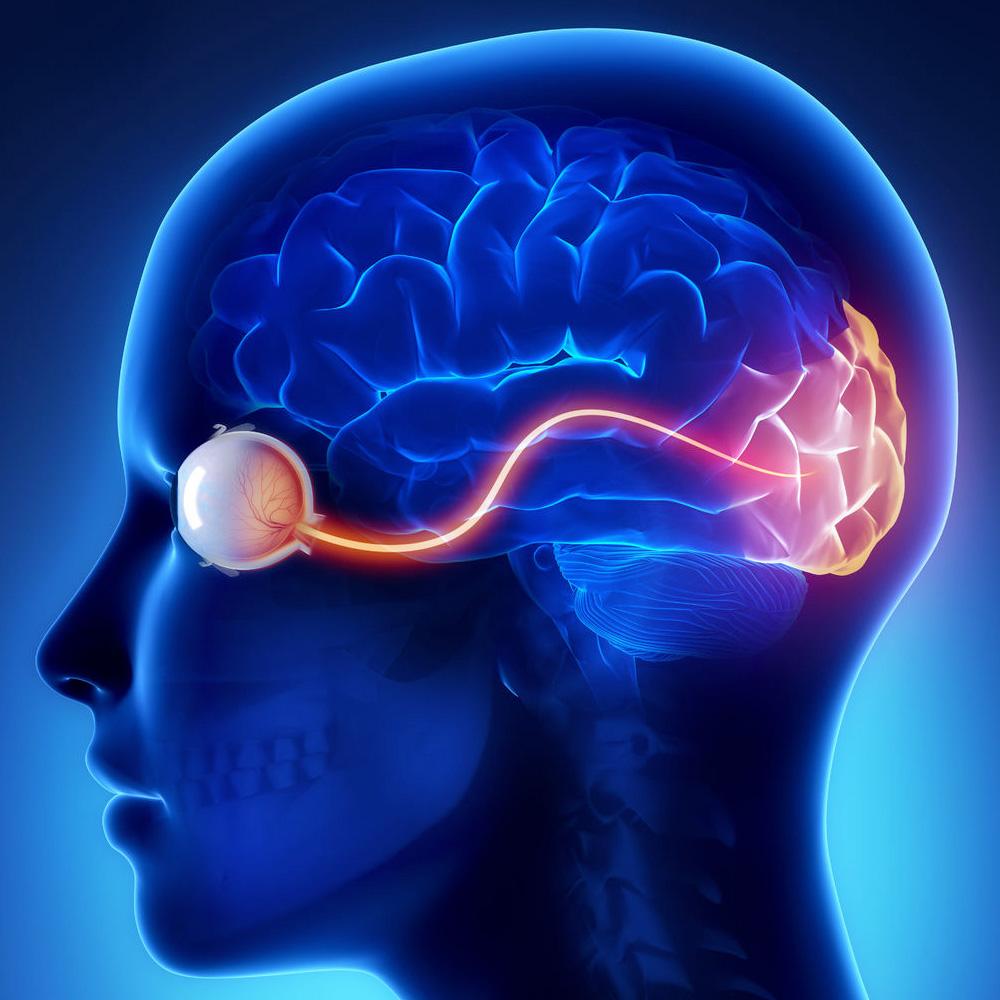 Cerebral Palsy - Cureisin